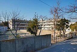第2パークハイツ[2階]の外観