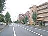 周辺,1K,面積29.04m2,賃料5.2万円,JR常磐線 水戸駅 徒歩33分,,茨城県水戸市千波町463番地