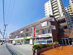 JUN志木ハイツ[3階]の外観