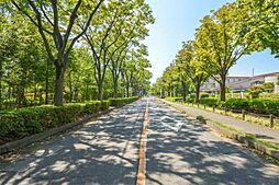 志木ニュータウン東の森弐番街 六号棟