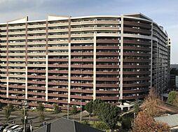 ダイアパレスU‐アリーナ 西武池袋線入間市駅 歩2分