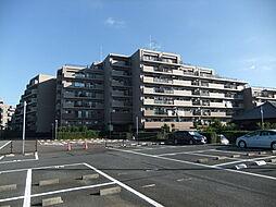 ウィンベルコーラス誉田