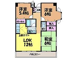 愛媛県松山市東石井6丁目の賃貸マンションの間取り