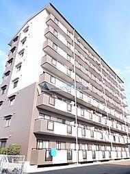 セピア辻井横小路[7階]の外観