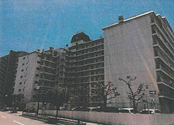 神奈川県平塚市老松町 プリメーラ平塚 中古マンション