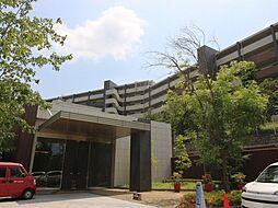 神奈川県川崎市麻生区はるひ野1丁目の賃貸マンションの外観