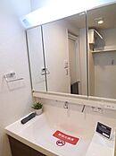 シャンプーも気軽にできるハンドシャワー付きの洗面化粧台。収納付きミラー、大容量のボウルを装備しています。