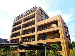 TWNCOURT・CAPELLA[2階]の外観