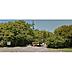 周辺,ワンルーム,面積29.67m2,賃料5.0万円,JR室蘭本線 東室蘭駅 徒歩19分,,北海道室蘭市中島町2丁目