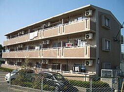サニーコート[1階]の外観