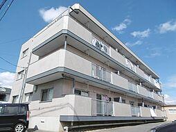 マンション新明[1階]の外観