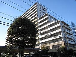 さいたま市中央区円阿弥5丁目
