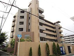 シャルマン木ノ元[6階]の外観
