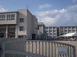 クレメントR[1階]の外観