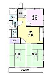 静岡県三島市新谷の賃貸アパートの間取り