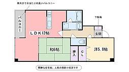 エルガーラ入江[402号室]の間取り