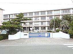 [テラスハウス] 静岡県浜松市南区安松町 の賃貸【/】の外観
