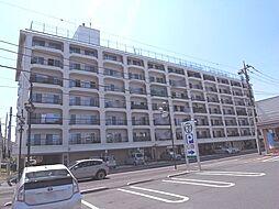 シャンボール新松戸