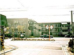 京都府城陽市富野の賃貸マンションの外観