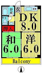 東京都足立区花畑4丁目の賃貸マンションの間取り