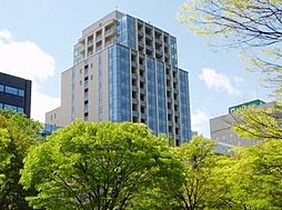 札幌市営東西線 大通駅 徒歩2分の賃貸マンション