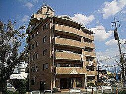 福岡県糟屋郡志免町志免中央4丁目の賃貸マンションの外観