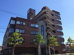 信開ドムス駅南