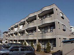 埼玉県さいたま市南区鹿手袋5丁目の賃貸マンションの外観