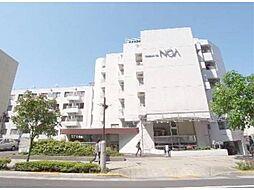 メゾン・ド・ノア聖蹟桜ヶ丘[1階]の外観