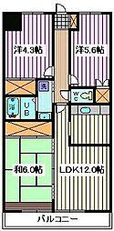 埼玉県さいたま市南区辻6丁目の賃貸マンションの間取り