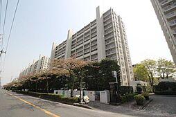 志木ニュータウン中央の森弐番街