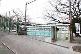 金井小学校まで約546m