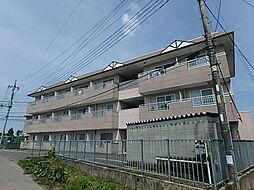 サンライトハイム7[2階]の外観