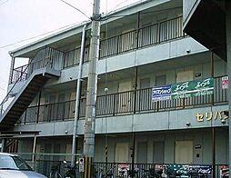 JPアパートメント柏原[3階]の外観
