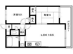 ダンディーライオン御影5[5階]の間取り