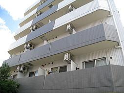 プレール・ドゥーク亀戸III[7階]の外観