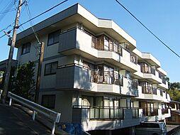 京都府京都市伏見区桃山町本多上野の賃貸マンションの外観