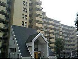エバーランドシティ新・泉北7番館[11階]の外観