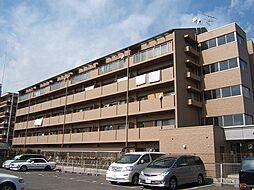 京都府京都市山科区東野片下リ町の賃貸マンションの外観