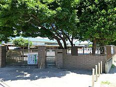 幼稚園東京女子学院幼稚園まで1434m