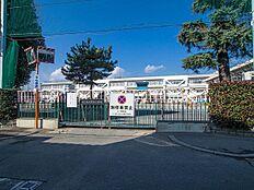 小学校 500m 立川市立第五小学校