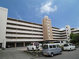 東山本ハイツ[3階]の外観