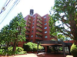 東高駒込ペアシティ