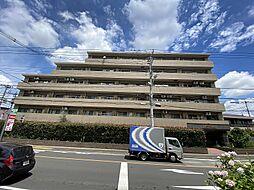 ベルジュール桜堤〜リノベ済〜