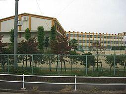 [テラスハウス] 愛知県名古屋市西区野南町 の賃貸【/】の外観