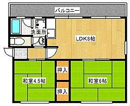 レデント和泉[306号室]の間取り