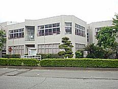つくば市立栄小学校(2553m)
