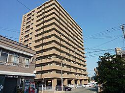 エバーライフ久留米中央[5階]の外観