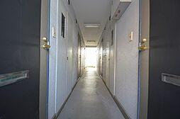 陽射し差し込む共用廊下.床・壁状態良好.