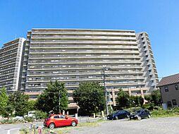 ニューロシティ  マウンテンビューコート 7階 4LDK C